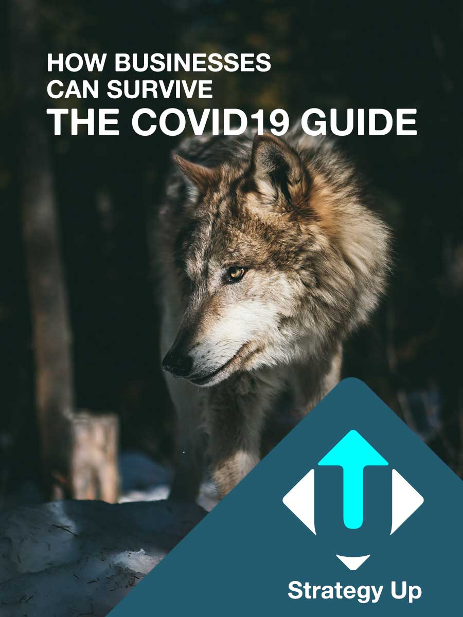 How businesses can survive the cvovid19 guide